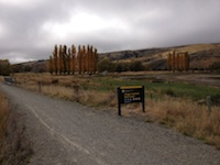 ORT trail2