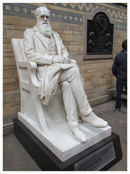 Charles Darwin in the Natural History Museum, London