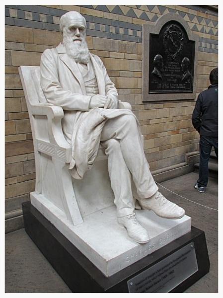 Charles Darwin in the Natural History Museum, London